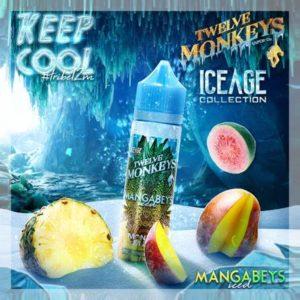 Twelve Monkeys - Mangabeys Iced