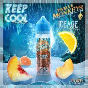 Twelve Monkeys - Puris Iced