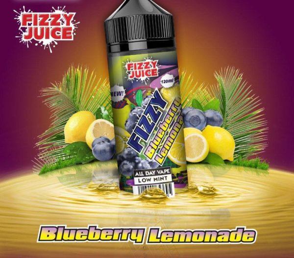 MOHAWK & CO Fizzy Blueberry Lemonade 100ML